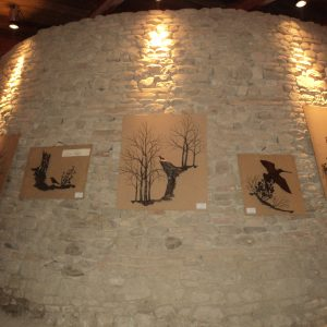 2013 Citta di Castello muro